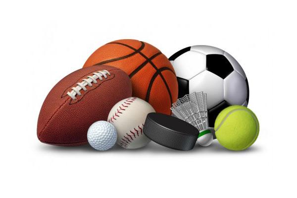 Profesionalni sportaši kojima je sport osnovna djelatnost